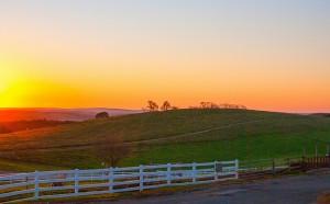 Sunrise, June Mita