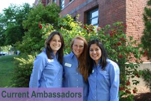 Current Ambassadors