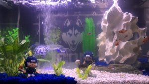 "My 10 Gallon ""UConn"" Fish Tank."